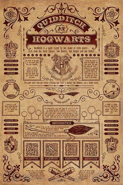 Poster Harry Potter Quidditch At Hogwarts X